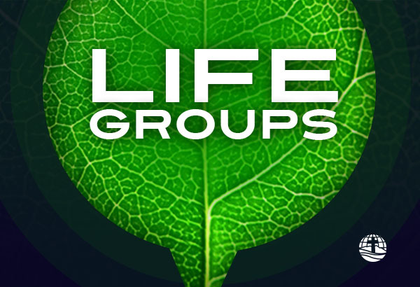 riverview life groups widget1